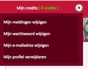 365Flirten.nl account