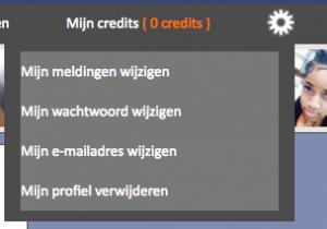 Vindeenmatch.nl profiel wissen